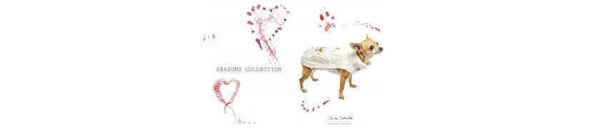 Zamp'arte manteaux tapis sacs de transport chiens Daniela Dallavalle